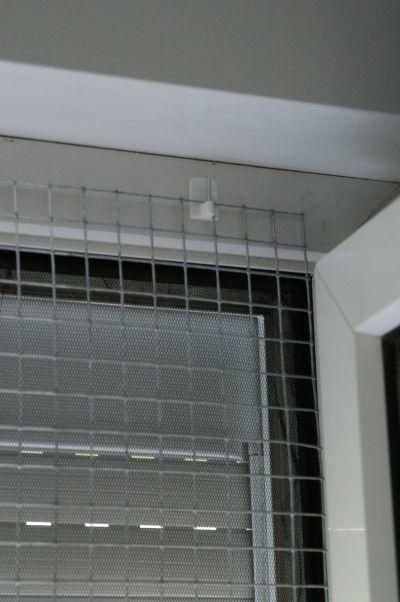 katzen forum schnelle und preiswerte sicherung f r. Black Bedroom Furniture Sets. Home Design Ideas