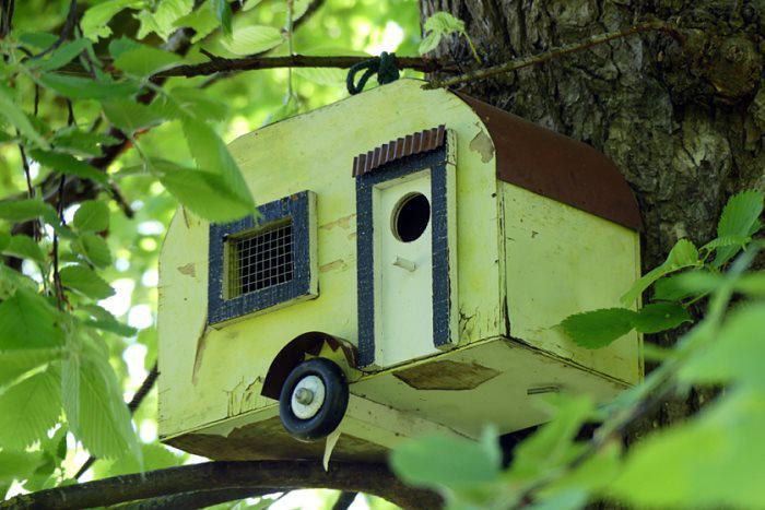 Vogel-Camping